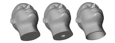 FaceGen Additional Model Sets