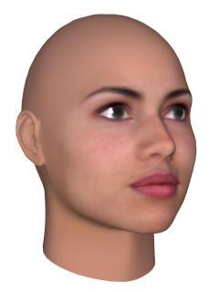 Facegen 3d Faces And Heads