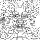 modeller_mesh1_2_2